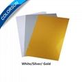 Instant PVC/PET Card - Gold Color