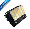 DX6 print head EPSON  F191010/F191040