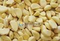(FX-128-2) 大型大蒜脱皮机(剥皮机)