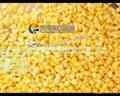 (MZ-268)  甜玉米脱粒机 凤翔牌 & 视频