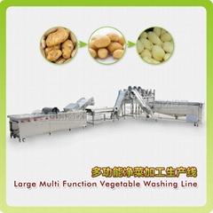 Large Multi Function Vegetable Washing Line (Hot Product - 1*)