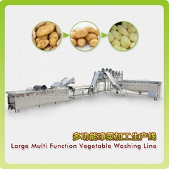 Large Multi function vegetable washing line (Hot Product - 1*)