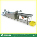 (WAFC-2000) 洗菜线