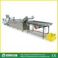 (WAFC-2000) Vegetable Cutting Line/