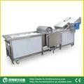 (WA-2000) Vegetables Washing Machine