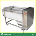 (MSTP-500) Carrot Washing & Peeling