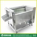 (MSTP-80-1) Carrot Peeling Machine/
