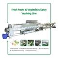 新鲜果蔬挑选分检喷淋清洗生产线