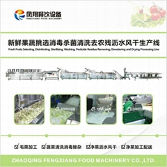 Selection of fresh fruits and vegetables sterilization cleaning to line