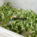 (FC-305) Pepper Slicing Machine/ Chilli Cutter/ Pepper Cutting Machine & Video 6