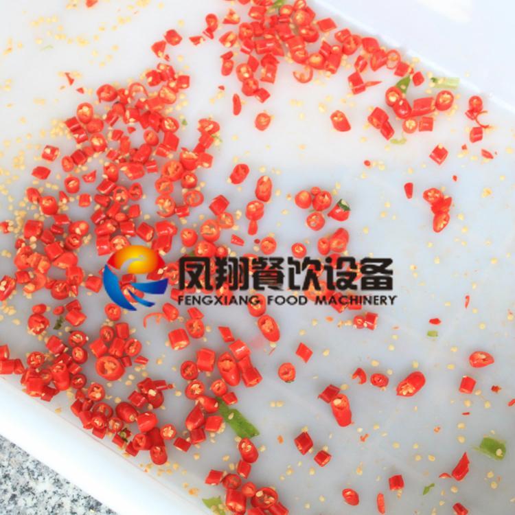 (FC-305) Pepper Slicing Machine/ Chilli Cutter/ Pepper Cutting Machine & Video 4