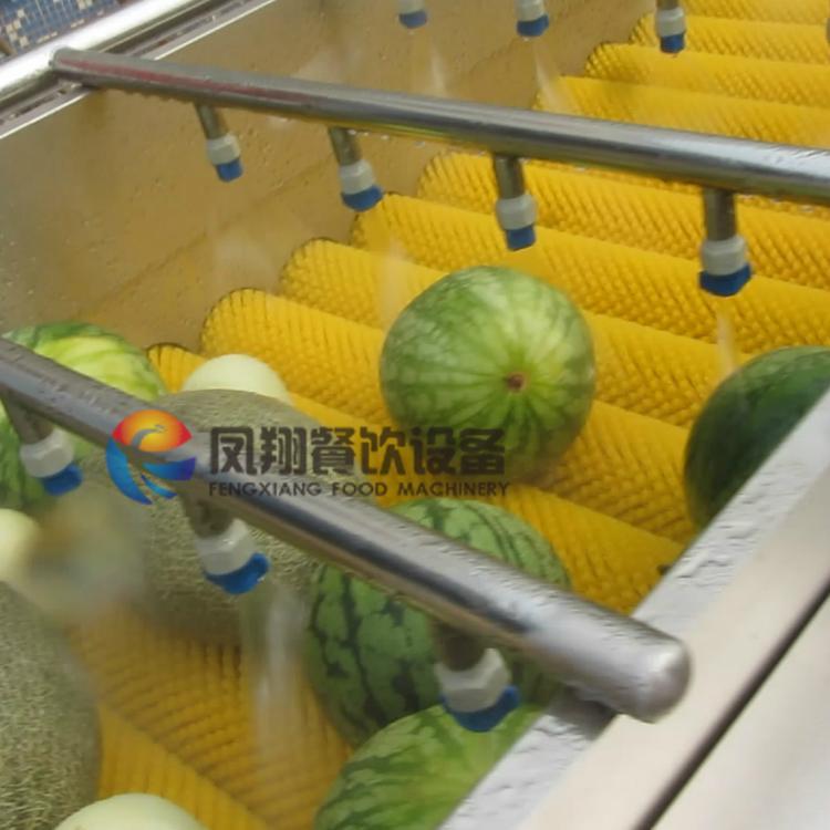 (HP-360) Fruit Washing and Drying Machine 3