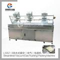 LSBZ-3 流水式真空 充氣 包裝機  2