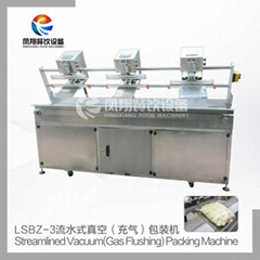 LSBZ-3 Vacuum package machine
