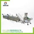 CWA-2000 蔬果切割清洗