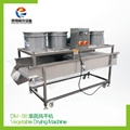 DM-50 Vegetable Drying Machine