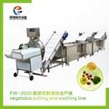 FW-2000 蔬菜切割清洗生产线