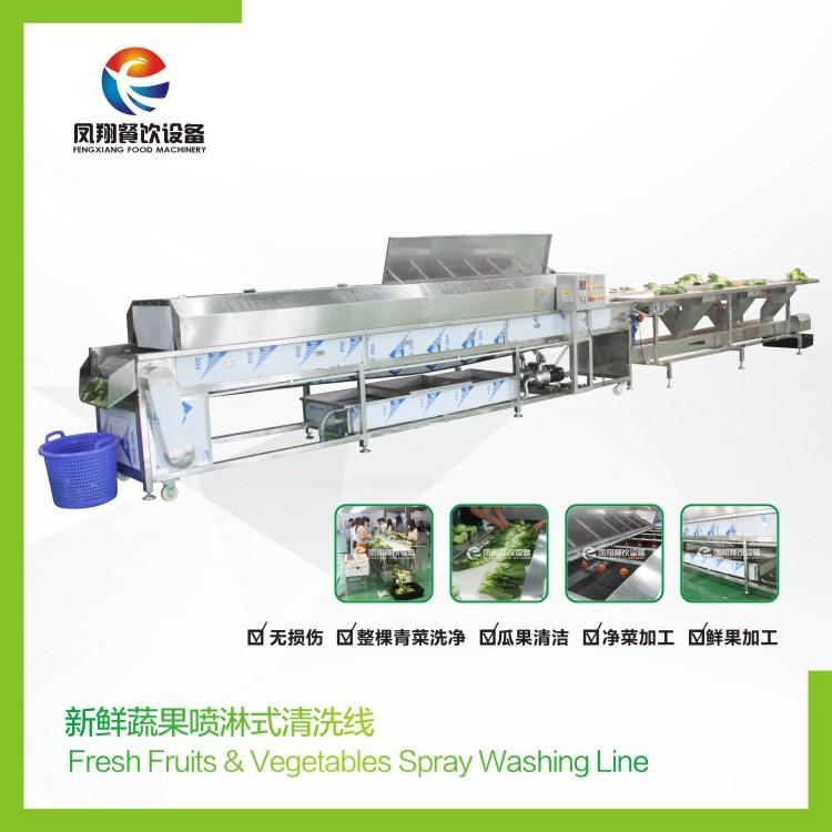 Vegetable cleaning line