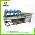HPD-30 Fruit and vegetable washing