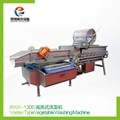 XWA-1300 Vortex type vegetable washing