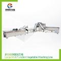 Multifunctional vegetable processing