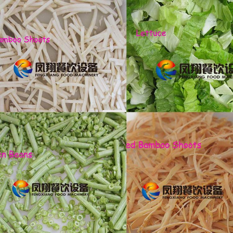FC-301D Double head vegetable cutter 5