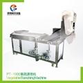 PT-1000 Vegetable Blanching Machine