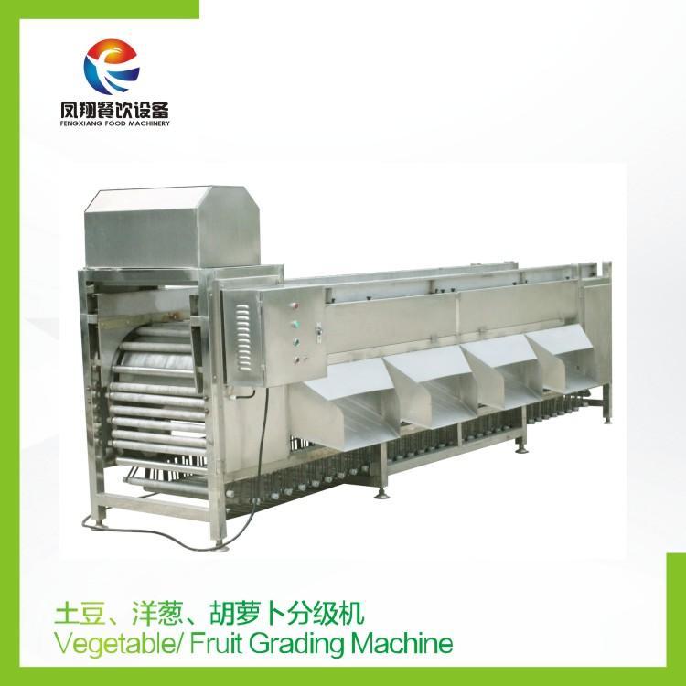 Vegetable Fruit Grading Machine