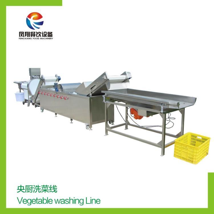 Vegetable washing line