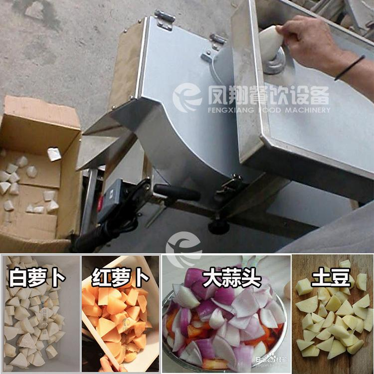 FC-613 Rhizome cutting machine 3