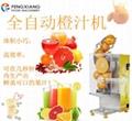 ZC-B3高效自动鲜橙榨汁机 吧台自动橙汁机   3