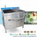 WASC-10 小型果蔬清洗消毒机