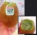 Fresh Fruit Juicer Machine Pitaya / Orange Fresh Fruit Juicer 5