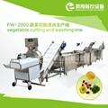 FW-2000 蔬菜切割清洗生产线 2