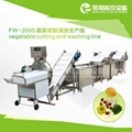 FW-2000 Vegetable Cutting