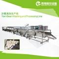 Saussurea  Washing Production Line