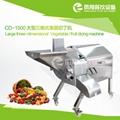 CD-1500 大型果蔬切丁機