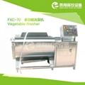 FXC-70 多功能洗菜机