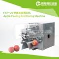 FXP-22 苹果去皮捅芯机
