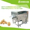 MSTP-80 Potato peeling machine fish skin