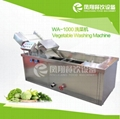 WA-1000  Vegetable Washer Machine