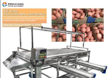 POTATO AND ONION SORTING MACHINE