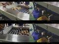 鳳翔HFM-1 紅薯分級機 蔬果分選機 2
