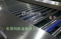 凤翔HFM-1 红薯分级机 蔬果分选机