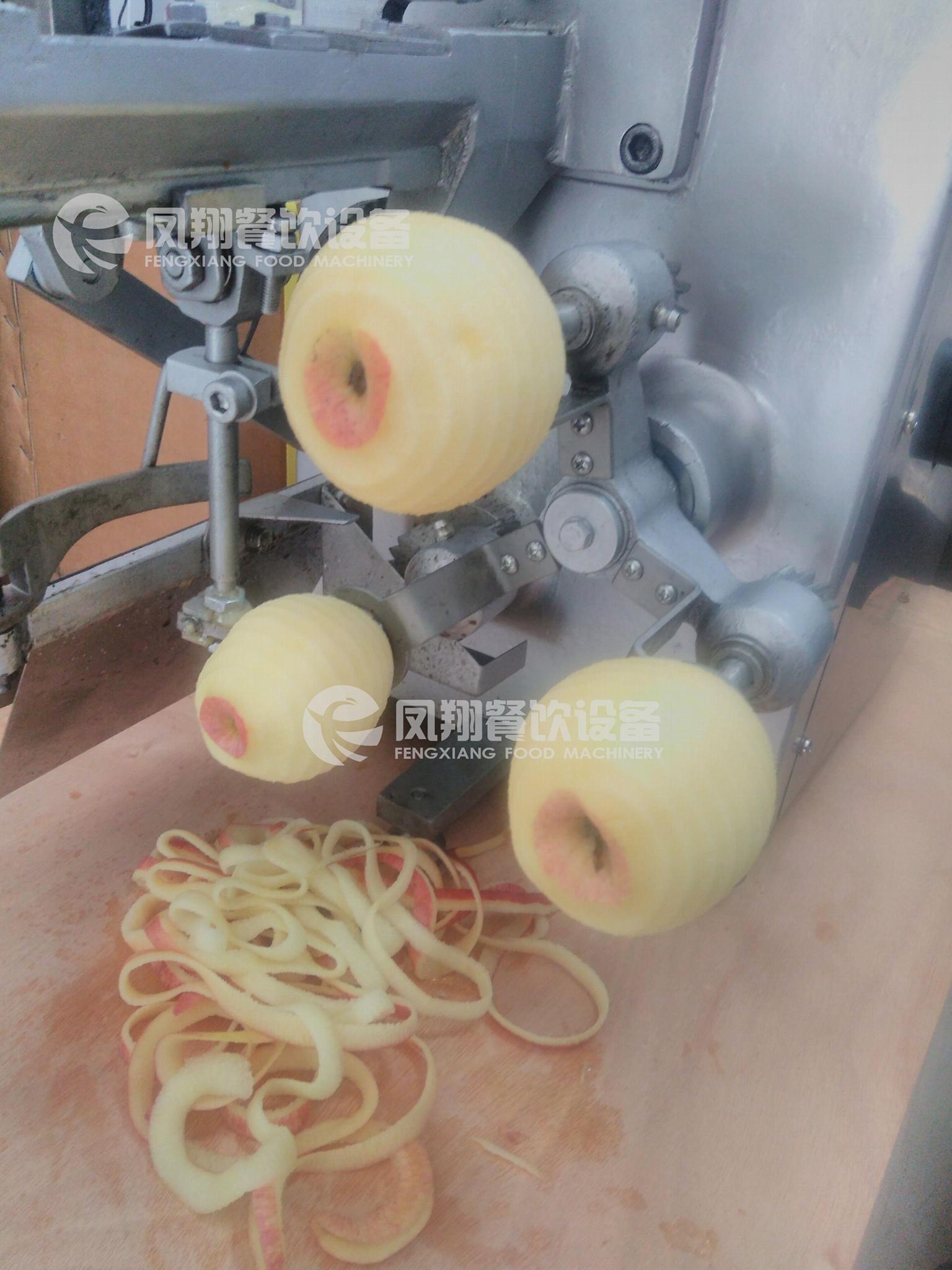 FXP-22 蘋果去皮捅芯機 4