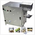 FXP-33 fruit peeling machine 2