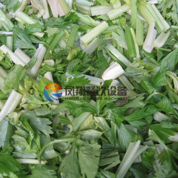 FC-301 Multi-function vegetable cutter 4