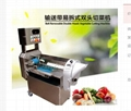 FC-301B  Vegetable cutter