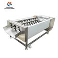 GL-380 白萝卜清洗机
