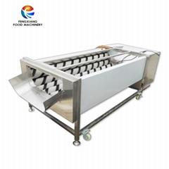GL-380 Potato Washing Machine brush fruit washing machine